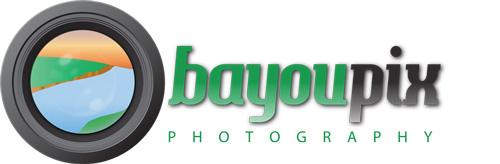 bayoupix.com